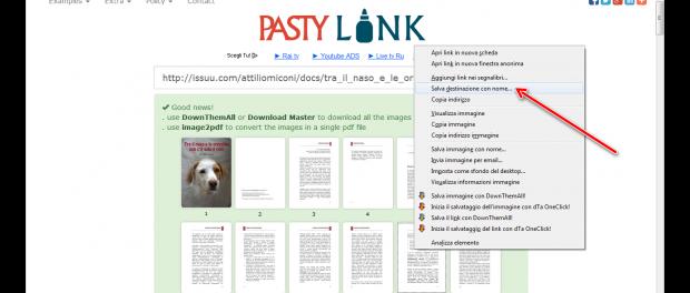 Download di libri e riviste gratis da Issuu, ecco come fare