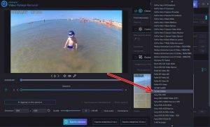 Distorsione-Ashampoo-Video-Fisheye-Removal